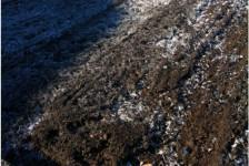市内各地で霜柱。いよいよ本格的な冬到来?
