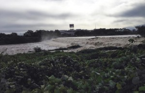 台風の入間川
