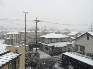 狭山市2014初積雪