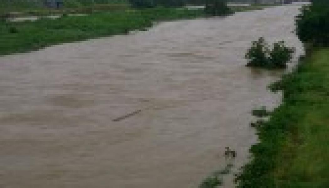 全国で梅雨入り…関東で雨脚強まり、各地で大雨警報