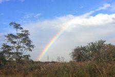 狭山の空に巨大な虹出現!