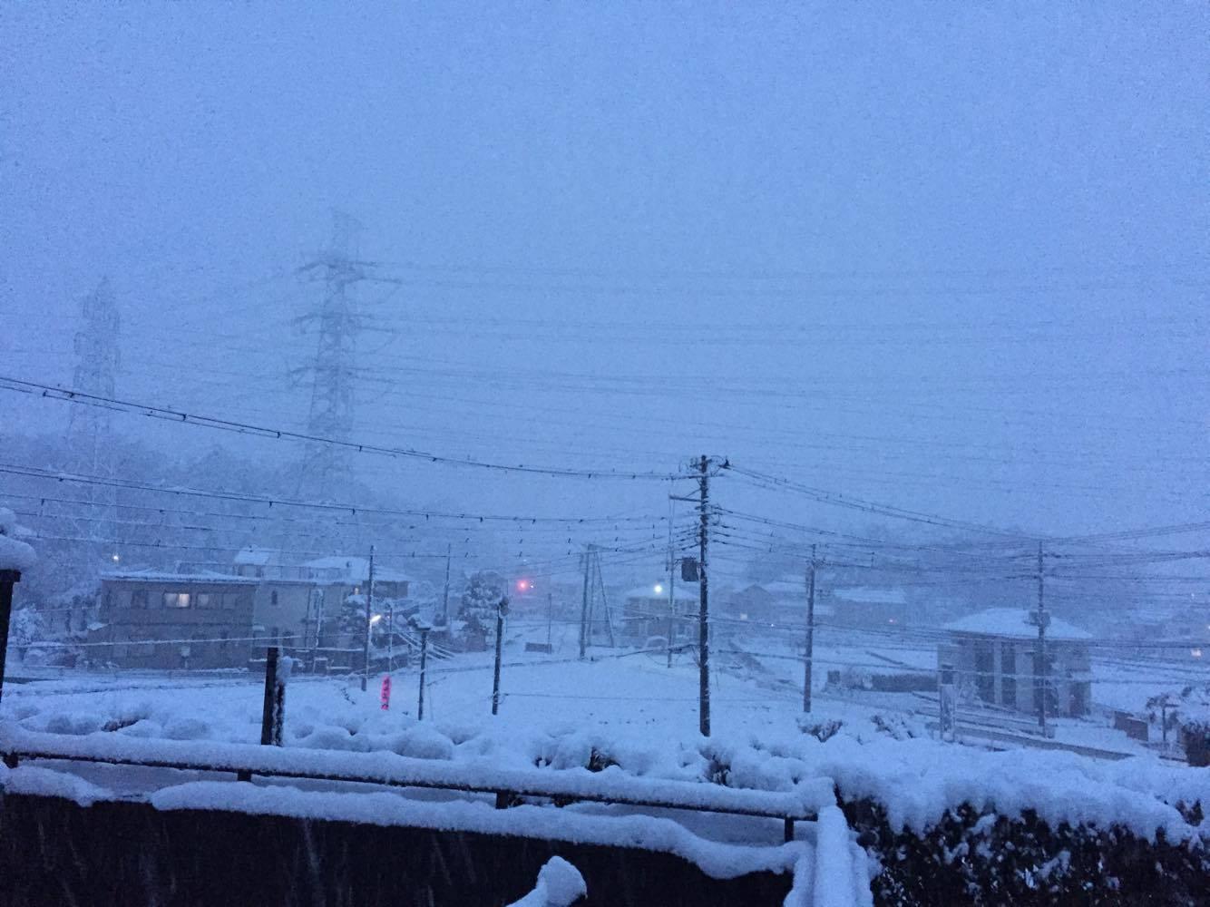 狭山市沢の雪2016 アイサヤマ
