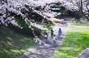 「入間川サイクルフェスタ in SAYAMA」が開催されます。