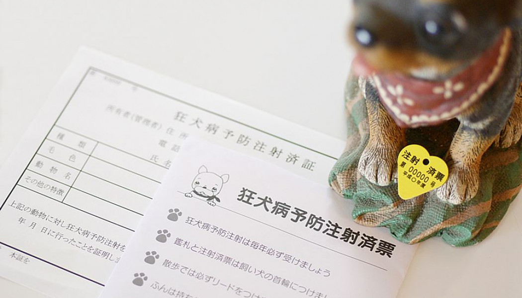 市内各地で平成29年度狂犬病予防集合注射が行われます。