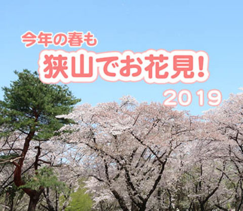 今年の春も狭山でお花見! ~2019~