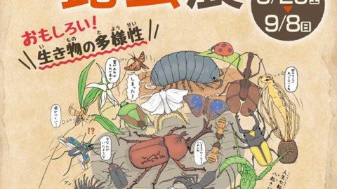 夏期企画展「ざんねんな昆虫展~おもしろい!生き物の多様性~」